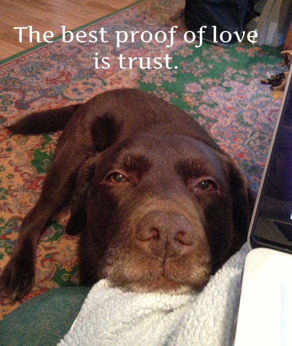abby best proof of love
