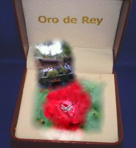 family ring, oro de rey box, summer birthday party