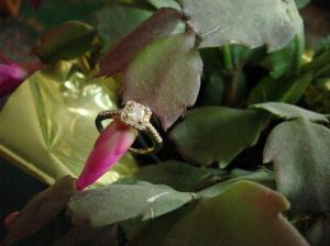 engagement ring, gold of the king, oro de rey, diamond , princess diamond, 14 kt gold,